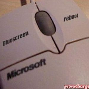 Die erste Microsoft Maus